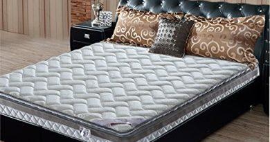 sitang sección loco para crear una cómoda para dormir + acero integral agradable a la piel transpirable y lavable colchón de coco 3D de alta manganeso GB208 – 11 (T) Colchonería